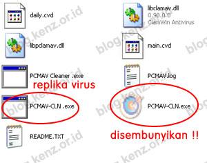 Penularan Virus Aksika-Kristy pada UFD