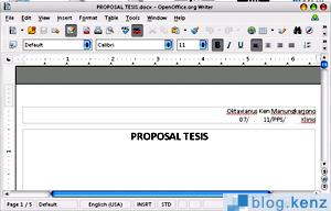 Open Office 3.0.1 Docx